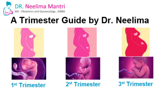A Trimester Guide by Dr. Neelima